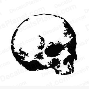 Skull listed in cartoons decals.